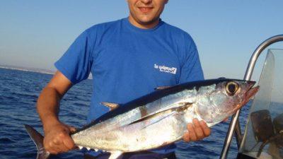 Ψαρεύοντας τοννάκια από το σκάφος