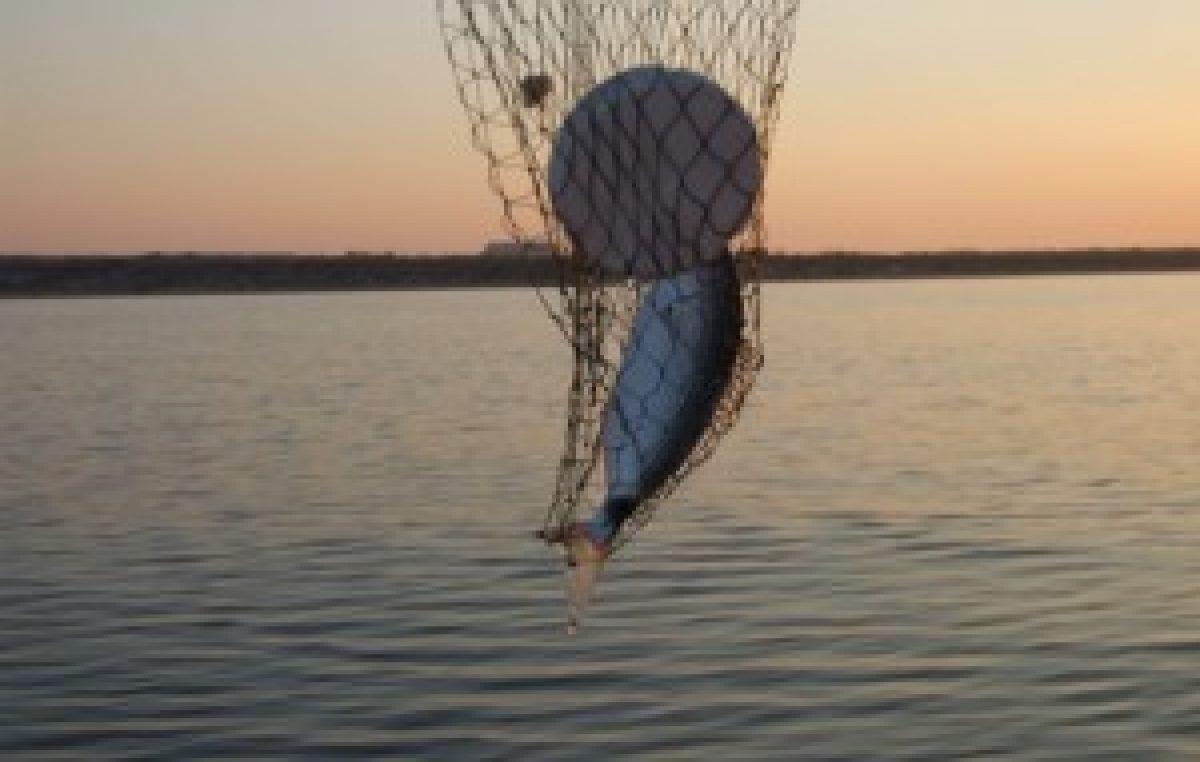 Ψάρεμα μελανουριών με φελλούς στον αφρό