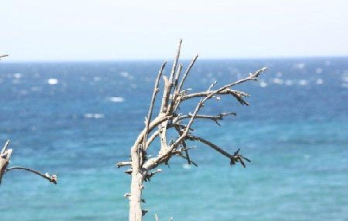 Διαπόντια Νησιά