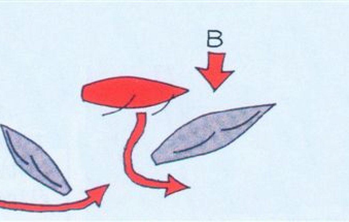 Θαλασσινή κυκλοφορία για ιστιοφόρα