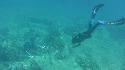 Σεμινάριο με θέμα «Ψαρευτικό αρχείο & Επιτυχημένες εξορμήσεις» από το σύλλογο Γλαύκο