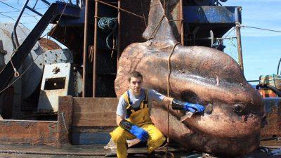 Oι φωτογραφίες του Ρώσου ψαρά έρχονται απευθείας από την κόλαση