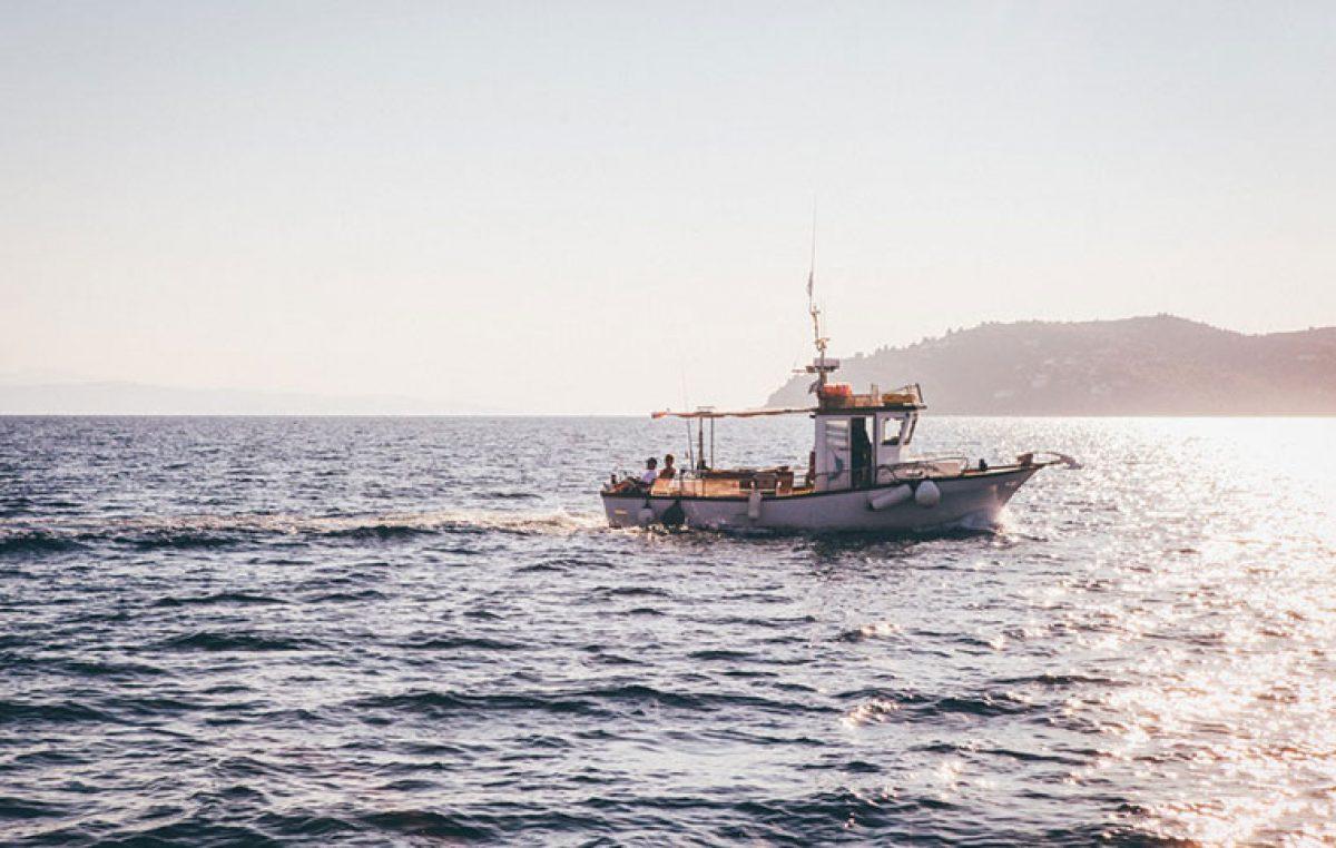 Τέλος το ελεύθερο ψάρεμα για τους ερασιτέχνες επανέρχεται η άδεια